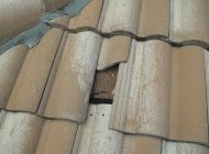 Damaged Roof Tile