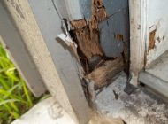 Wood Decay at Base of Door Frame