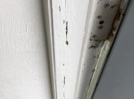 Termite damage at door frame