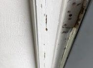 Termite damage at door frame
