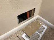 Termite damage found in plumbing access panel